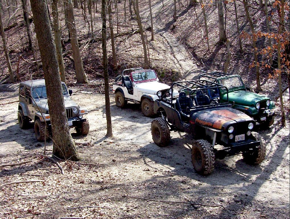 jeeps-in-repose.jpg